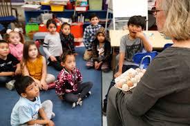 cynthia christopher s kindergarten class receives en eggs to hatch at stonehurst magnet school in sun valley