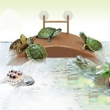 аквариум танк черепаха рептилия баскирование терраса остров платформа дом док