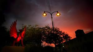 Glow In The Dark Trees To Replace Street Lights Led Streetlight Conversion Makes Tucson Skies Slightly