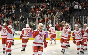 Texas Stars At Grand Rapids Griffins February Minor League
