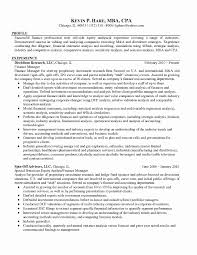 Profile Statements For Resume Sample Resume Profile Statement 317