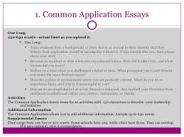 words essay essay on terrorism 150 words rufgs mlbfan org