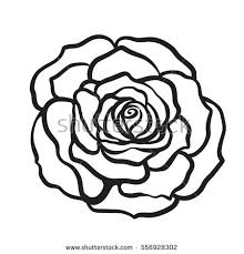 Small Picture Rose Outline Vector Stock Images Royalty Free Images Vectors