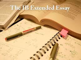 academic essay editing site online essays on the auteur theory