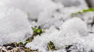 Image result for image of snow melting