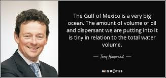 Bp Quote Delectable TOP 48 OIL SPILL QUOTES Of 48 AZ Quotes