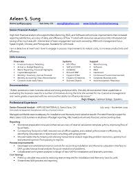 Chic Professional Resume Examples Finance On Financial Analyst