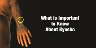 Kyusho Jitsu Chart What Is Important To Know About Kyusho Usadojo Com