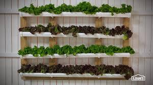 Vertical Herb Garden In Your Kitchen Gutter Garden Youtube
