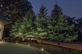 Evergreen Outdoor Landscape Lighting Naperville Tree Lighting Outdoor Lighting In Chicago Il