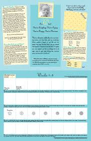 Pregnacy Clander The Pregnancy Calendar Your 40 Week Guide To Prenatal Care And
