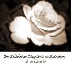 Sprüche Und Gedichte Tierfreunde2000duesseldorf Jimdo Page
