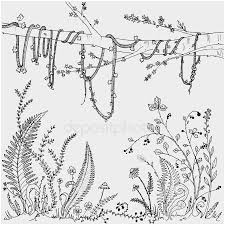 Vine And Branches Coloring Page Fresh Grape Dot To Dot Coloring Pages