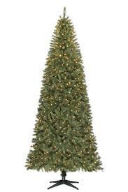 Christmas Holiday At Center Parcs U2013 Sherwood Forest Near NottinghamSherwood Forest Christmas Trees