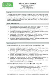 Resume Professional Profile Examples Best Of Profile Statement For Resume Examples Help Writing Professional Best