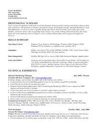 General professional summary