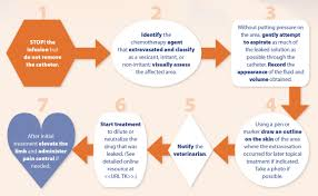 Extravasation Treatment Chart 7 Steps For Managing Chemotherapy Extravasation