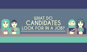 What Do Jobs Look For What Do Candidates Look For In A Job Inforgraphics Insight It