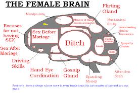 showing post media for cartoon brain women cartoonsmix com cartoon brain women female brain cartoon female brain gif 579x393 cartoon brain women