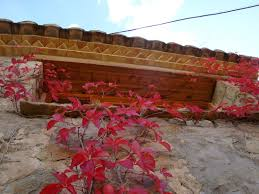 Resultado de imagen de imágenes otoño olba