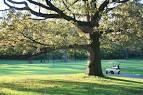 Forest Park Golf Course,