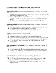 Resume Sample Work Experience Haadyaooverbayresort Com