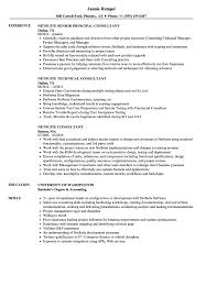 Live Resume Netsuite Consultant Resume Samples Velvet Jobs 12