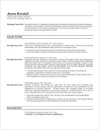 medical insurance resume medical collection specialist resume collector debt billing sample
