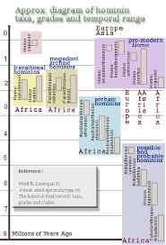 Hominin Chart Ancestors Species Of Hominids And Hominins At Metaprimate