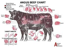 Cow Chart Steak Angus Beef Chart Butchers Guide Poster 32 Inch X 24 Inch 17 Inch X 13 Inch