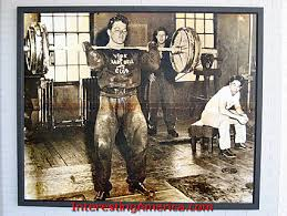 york barbell weight. photo of dave sheppard, clyde emrich and tommy kono. york barbell weight