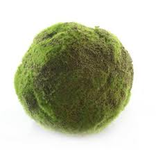 Decorative Moss Balls Decorative Moss Balls Wayfair 22