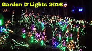 Christmas Lights Botanical Garden Bellevue Wa Garden Dlights Bellevue Botanical Garden Washington December 2016