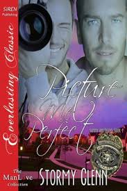 Read Picture Me Perfect by Stormy Glenn - Popular Billionaire Romance Books