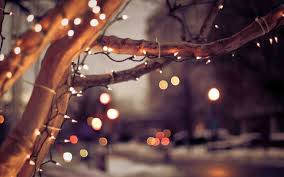 christmas lights photography tumblr. Wonderful Tumblr Liked Like Share And Christmas Lights Photography Tumblr S