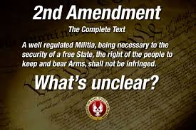 2nd Amendment Quotes Awesome 48nd Amendment Quotes American Firearms