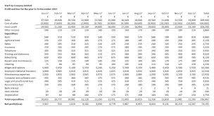 Profit Projections Template Startup Cash Flow Projection Template 12 Month Cash Flow