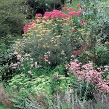 Small Picture Garden Border Design Online Container Gardening Ideas