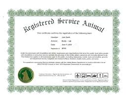 dog birth certificates printable dog birth certificate fresh template pet birth certificate
