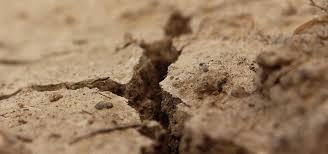 Výsledek obrázku pro sucho