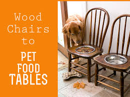 repurpose furniture dog. BH\u0026G Created A Decorative Way To Raise Pet Food Bowls Off The Floor By Cutting Holes Into Chairs. Raised Make It Easier For Large Eat. Repurpose Furniture Dog