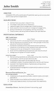 Senior Accountant Resume Sample India Luxury Sample Resume