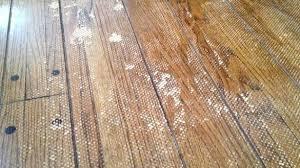 brilliant rug pad for hardwood floors on awesome best area wood rugs home design ideas floor