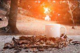 At sunrise coffee, we believe in the power of a good cup of coffee. Autumn Leaves And A Cup Of Coffee Stoned Table Against The Golden Stock Photo Picture And Royalty Free Image Image 88059158