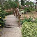 imagem de Belo Jardim Pernambuco n-18