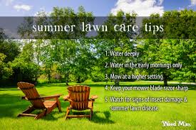 Weed Man Lawn Care Tips
