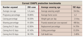 Cow Weight Chart Beyond The Biologic Wall Beef Magazine