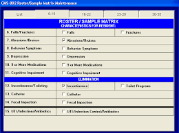Mds Charting Examples P Np Rms