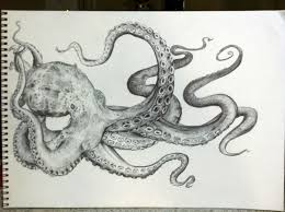 Small Picture 489 best Octopus images on Pinterest Octopuses Octopus art and