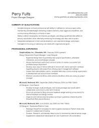 Professional Resume Template Word 2010 Best Resume Templates Word ...